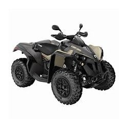 Can Am Renegade 650 T